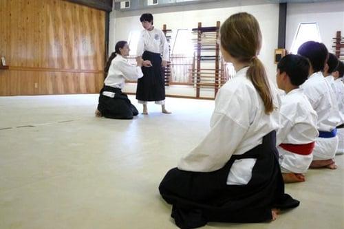 אייקידו - אומנות לחימה יפנית