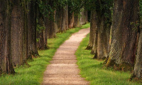מה יותר חשובה, הדרך או המטרה?