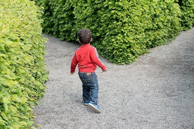 בחירה של ילד