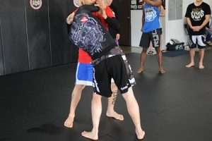 אימון MMA