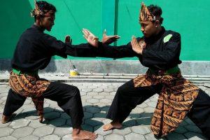 סילת אומנות לחימה אינדונזית